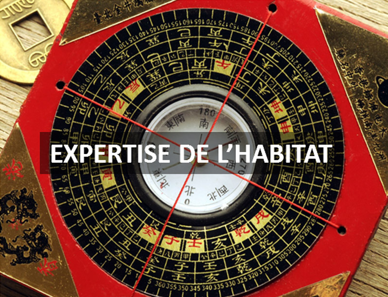 expertise Feng Shui Paris 77 94